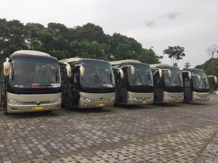 旅游大巴车 (19)