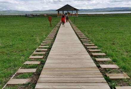 """甘南""""尕海""""湖 你要寻找的地方 甘南地区最大的淡水湖、是一个合家欢的鸟类天堂"""