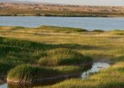 敦煌阳关自然保护区旅游攻略-自驾游路况-门票交通天气景点介绍